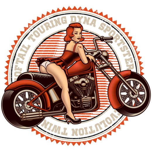 1984-2006 Harley Davidson Transmissions