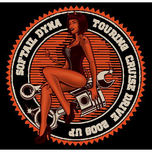 2006 Up Harley Davidson Transmissions